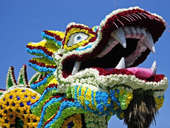 Largest Flower Parade in Austria 21st of August  - 24th of August 2014
